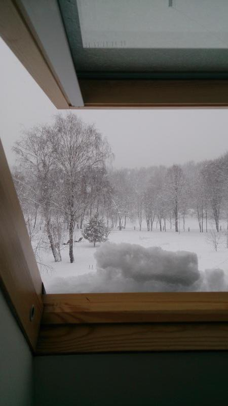 Velux зимой